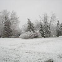 Snow Day  Colonie, NY, USA, Латам