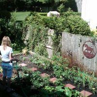begining of summer garden, Лауренс