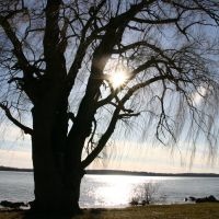 Onondaga Lake, Ливерпуль