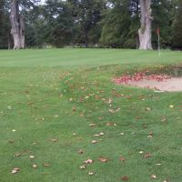 Early autumn golf in liverpool, Ливерпуль