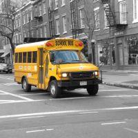 School bus, Лонг-Айленд-Сити