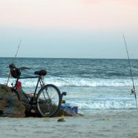 Bike to the Surf and Fish, Лонг-Бич