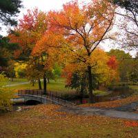 Autumn, Манхассет