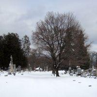 Albany Rural Cemetery, snow scene, Менандс