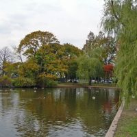 Cammans Pond Park, Меррик