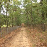 Brookhaven State Park - Red trail, Миддл-Айденд