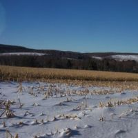 A Pause While XC Skiing on an Otsego County, NY, snowmobile trail, Моррис