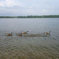 Lake Ronkonkoma, Несконсет