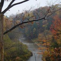 Big Sister Creek in New York, Норт-Коллинс
