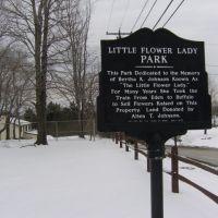 Little Flower Lady Park, Норт-Коллинс