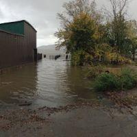 Waterfront Flooding, Ньюбург