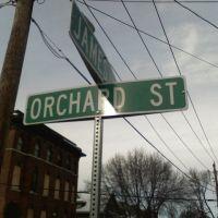 Orchard St Auburn, NY, Оберн