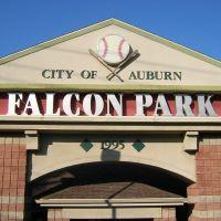 Auburn Doubledays - Falcon Park, Оберн
