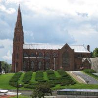 Cathédrale de lImmaculée Conception, Олбани