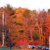 October Brilliance, Hartwick College, Oneonta, NY, Онеонта