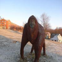 Hartwick College, Oneonta NY, Онеонта