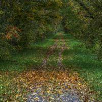 Erie Canal Trail - Oriskany, NY, Орискани