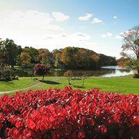 Green Lake in the fall, Орчард-Парк