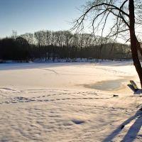 Green Lake in Winter, Орчард-Парк