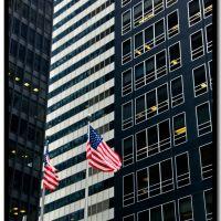 Wall Street: Stars and Stripes, stripes & $, Отего