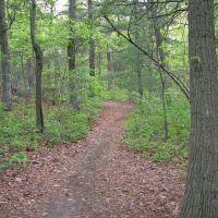 Nassau Suffolk Greenbelt Trail, Плайнвью