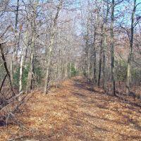 Bethpage State Park, Плайнвью