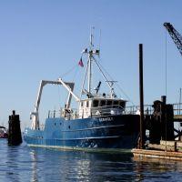 RV Seawolf, Порт-Джефферсон