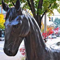 Horse Art, Саратога-Спрингс