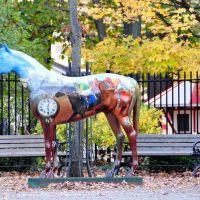 Saratoga Art, Саратога-Спрингс