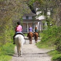 Horseback Riding in the Park, Смиттаун