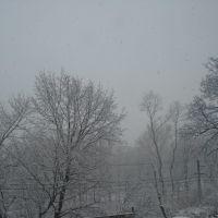 Nieve 2009, Уайт-Плайнс
