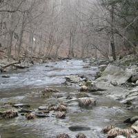 High Falls Stream, Филмонт