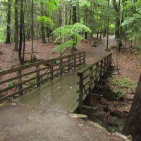 High Falls Trail Bridge, Филмонт