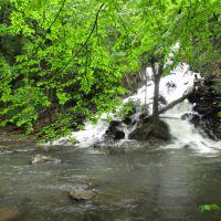 Tributary Falls on High Falls Creek (~100), Филмонт