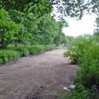Halls Pond, Франклин-Сквер