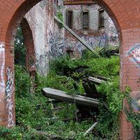 Ruins of Former Glory, Фрипорт