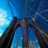 Brooklyn Bridge 2010, Хадсон-Фоллс