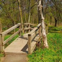Reinstein Forest Preserve, Чиктовага