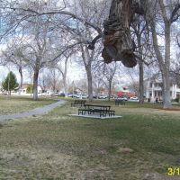 Robinson Park, Albuquerque, Альбукерк