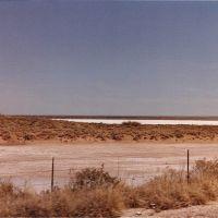 Laguna Gatuna, Декстер