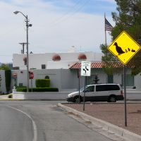Duck and rabbit crossing, Deming, New Mexico, Деминг