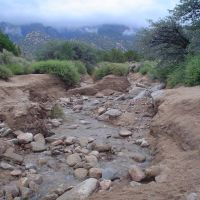 Water in arroyo, Sandia foothills, Корралес