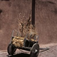 Old Cart, Таос