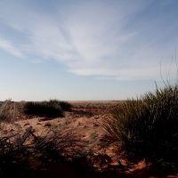 Quartz sandhills prominant in Roosevelt County NM, Татум