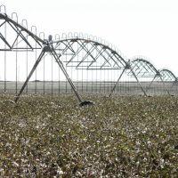 Cotton fields and irrigation equipment, Татум