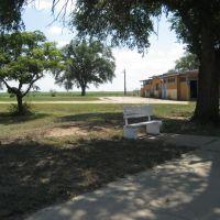 Morton, Texas: Swimming Pool, Татум