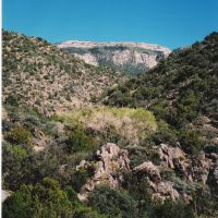 Cañon del Agua, Sandia Mountains, Тесукуэ