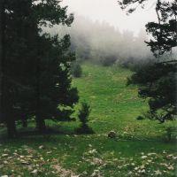Manzano Crest Trail, Тийерас