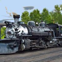 Cumbres & Toltec Scenic Railroad, Steam locomotive no. 488, Чама