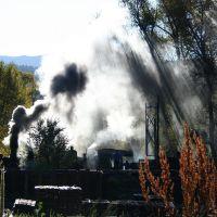 Cumbres & Toltec Engine 487, Чама